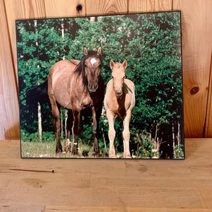 4/25$ Horses Mare and Foal wall art, western decor